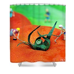 Planting On Tomato Field Shower Curtain by Paul Ge