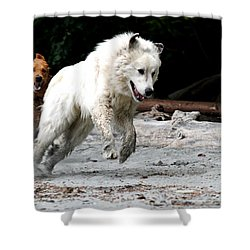Play Time On The Beach Shower Curtain