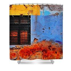 Playa Shower Curtain by Skip Hunt
