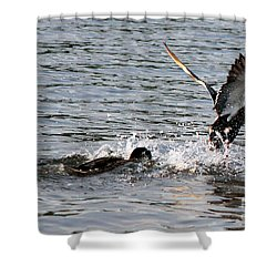 Shower Curtain featuring the photograph Playing Chase by Kathy  White