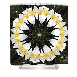 Plumeria 1 Shower Curtain