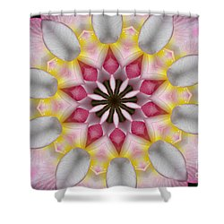 Plumeria 3 Shower Curtain