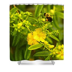 Pollinating The Flower Shower Curtain