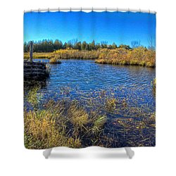 Pond 1 Today.psd Shower Curtain