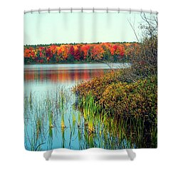 Pond In The Woods In Autumn Shower Curtain