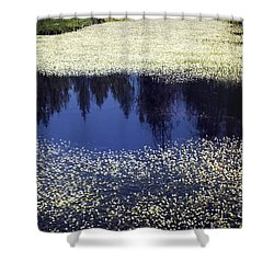 Pond Of Blooms Shower Curtain by Janie Johnson