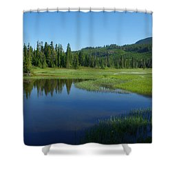Shower Curtain featuring the photograph Pond Reflection by Marilyn Wilson