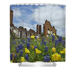 Pontotoc Schoolhouse Shower Curtain by Susan Rovira