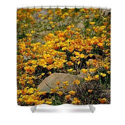 Poppies Everywhere Shower Curtain