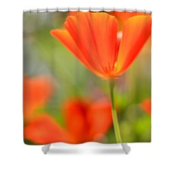 Poppies In The Wind Shower Curtain by Heidi Smith
