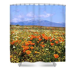 Poppies Over The Mountain Shower Curtain by Peter Tellone
