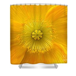 Poppy 2 Shower Curtain