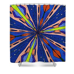 Portal To The Past Shower Curtain by Alec Drake