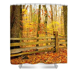 Post And Rail Shower Curtain