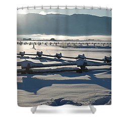 Powder Day Shower Curtain by Eric Tressler