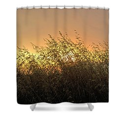 Prairie Dusk Shower Curtain