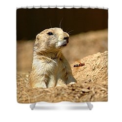 Prarie Dog Bee Alert Shower Curtain