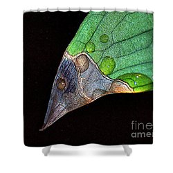 Predator Leaf Shower Curtain