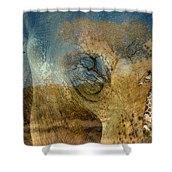 Shower Curtain featuring the photograph Preservation by Vicki Pelham