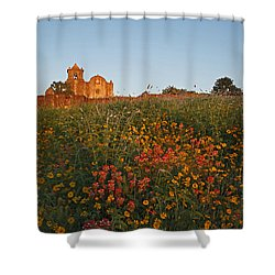 Presidio La Bahia 3 Shower Curtain by Susan Rovira