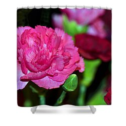 Pretty In Pink Shower Curtain by Sandi OReilly
