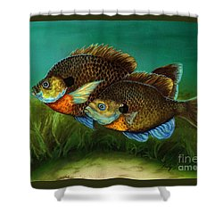 Pretty Little Panfish Shower Curtain