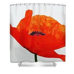 Pretty Poppy Shower Curtain by Ramona Johnston