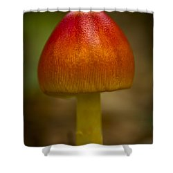 Pretty Wild Thing Shower Curtain by Kim Henderson