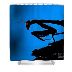 Preying On Dreams Shower Curtain
