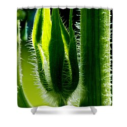 Prickly Affairs Shower Curtain