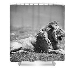 Pride In Black And White Shower Curtain by Sebastian Musial