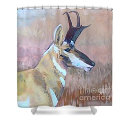 Shower Curtain featuring the painting Pronghorn by Donald Maier