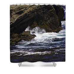 Protected From The Sea Shower Curtain by Jo-Anne Gazo-McKim