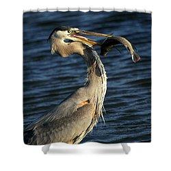 Proud Fisherman Shower Curtain by Sabrina L Ryan