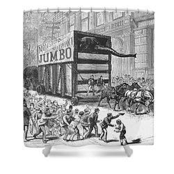 P.t. Barnum/jumbo Shower Curtain by Granger