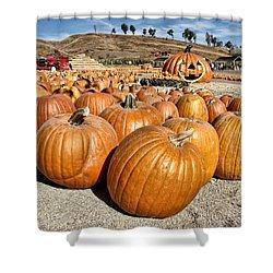 Pumpkin Patch 3 Shower Curtain