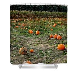 Pumpkin Patch Shower Curtain by LeeAnn McLaneGoetz McLaneGoetzStudioLLCcom