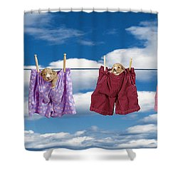 Puppies Hanging Out Shower Curtain by Darwin Wiggett