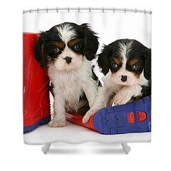 Puppies With Rain Boats Shower Curtain by Jane Burton