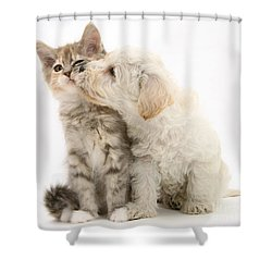 Puppy Nuzzles Kitten Shower Curtain by Jane Burton