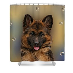 Puppy With Bubbles Shower Curtain by Sandy Keeton