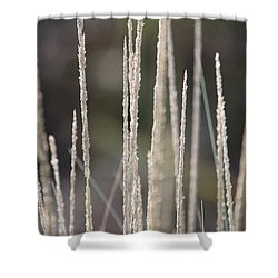 Shower Curtain featuring the photograph Pure by Amy Gallagher