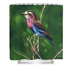 Purple And Blue Bird Shower Curtain