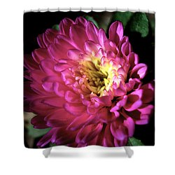 Purple Flower Shower Curtain by Sumit Mehndiratta
