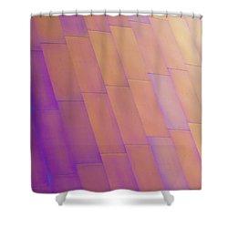 Purple Orange Two Shower Curtain by Chris Dutton