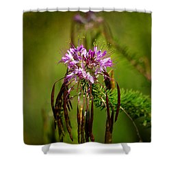 Shower Curtain featuring the photograph Purple Pizzazz by Vicki Pelham