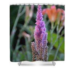 Purple Spear Shower Curtain by Bonnie Myszka