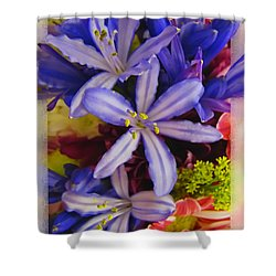 Purple Stars Shower Curtain by Debbie Portwood