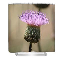 Shower Curtain featuring the photograph Purple Thistle by Donna  Smith