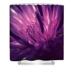 Purple Thistle Flower Shower Curtain